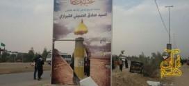 تلاش جریان (فرقه) شیرازی ها برای تخریب ایران در پیادهروی اربعین
