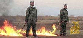 فتوای عجیب داعش برای زنده سوزی نظامیان ترکیه + کلیپ
